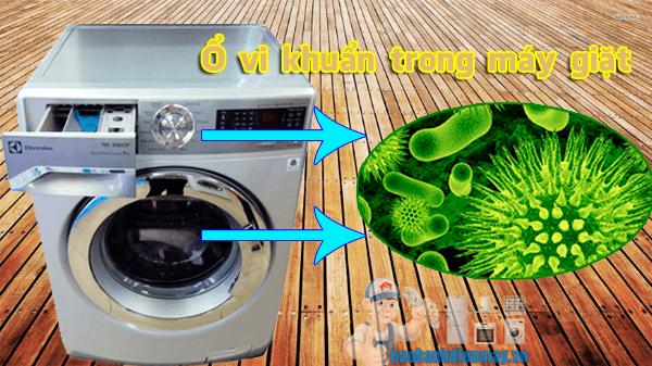 Ổ vi khuẩn trong máy giặt